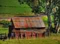 Old shed near Cowra 002