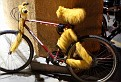2315 furry bike