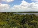 From the top of the Tallest Pyramid at Lamanai, Belize.  Looking North West...  Mexico is on the Horizon...