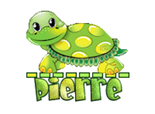 Pierre - CuteTurtle