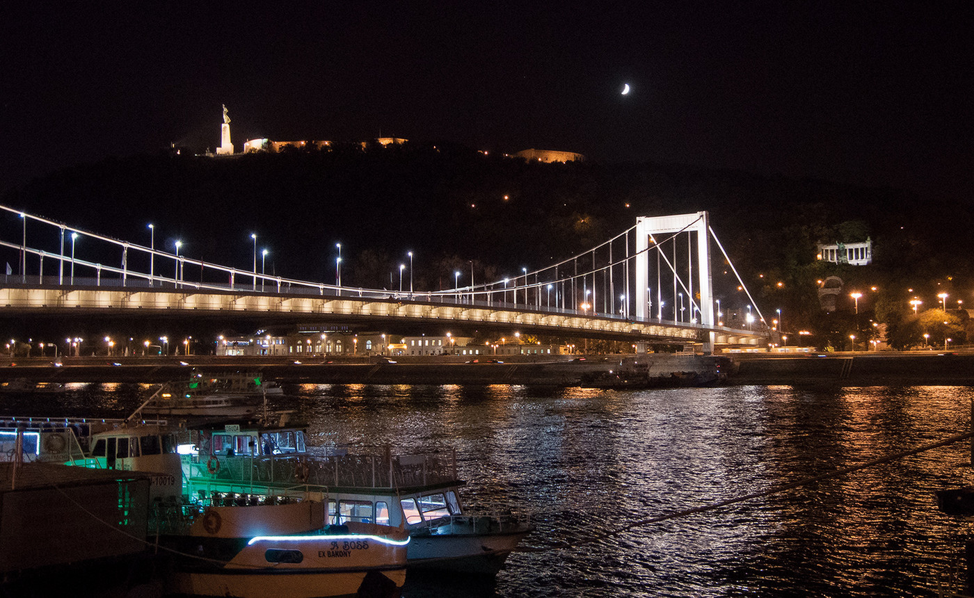 Danube quay at evening. Erzsebet bridge and The Liberty statue view.