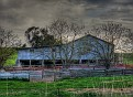 Emu Swamp Road Shearing Shed 001