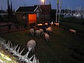Night Sheep and Very Serious Barb Wire!!!