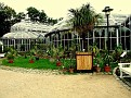 222. The Main Greenhouse left