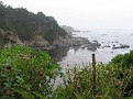 Big Sur - Coastline04
