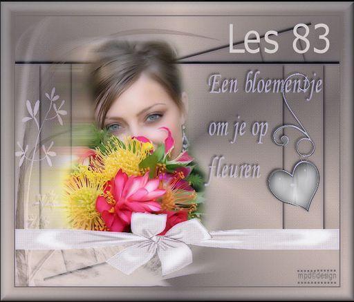 VB Les 83