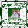 Adrianna-gailz-Kiss Me Im Irish QP by Cassie