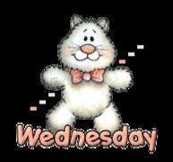 DOTW Wednesday - HuggingKitten NL16