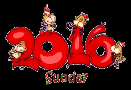 DOTW Sunday - 2016WithMonkeys