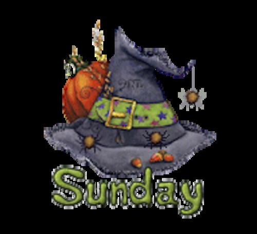 DOTW Sunday - CuteWitchesHat