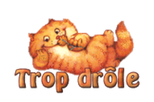 Trop drole - SpringKitty