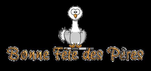 Bonne Fete des Peres - OstrichWithBlinkie