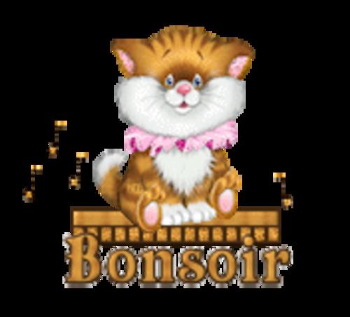 Bonsoir - CuteKittenSitting
