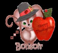 Bonsoir - ThanksgivingMouse