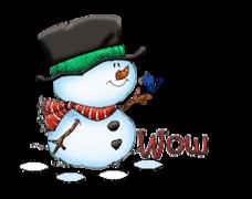 Wow - Snowman&Bird