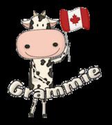 Grammie - CanadaDayCow