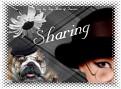 weseeyou-sharing