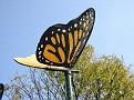 2007 Toledo Zoo 063