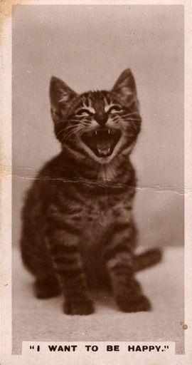 1931 De Reszke Real Photographs #15 (1)