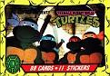 Teenage Mutant Ninja Turtles #001