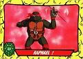 Teenage Mutant Ninja Turtles #022