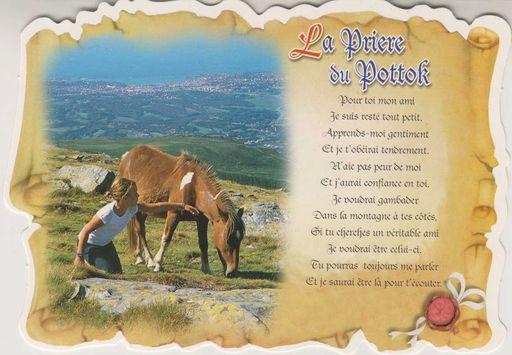 La Prière du Pottok NT (64)