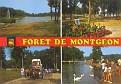 Foret de Montgeon (76)