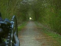 """Der """"Eisenbahntunnel"""" wird wieder grün"""
