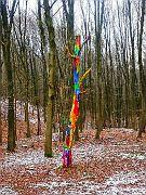 Kunstwerk der Waldtrolle?
