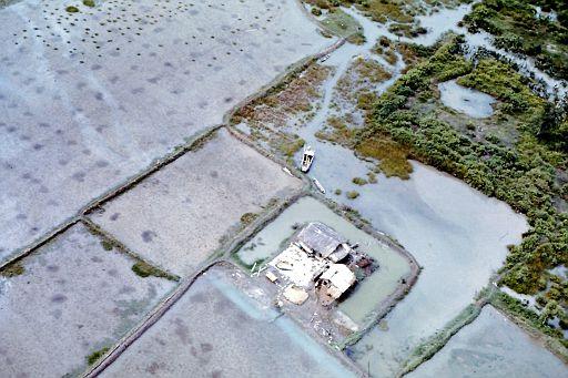27-Farm and Rice Paddies-1