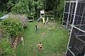 IMG 0433   2009-05-24